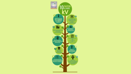 Características do kV